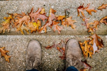 leather shoes on a concrete step with autumn leaves all around